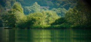 Gestión responsable del agua, de los efluentes, de los subproductos y de los residuos
