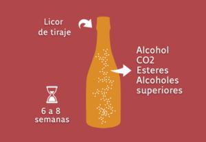Fermentación en botella
